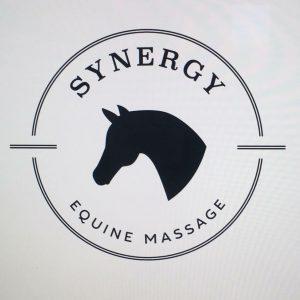 sponsorsynergy